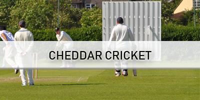 banner-cheddar-cricket.png